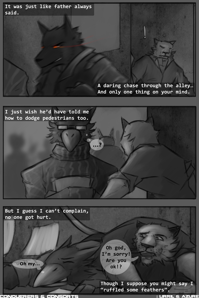 Page thirteen - Ruffled feathers